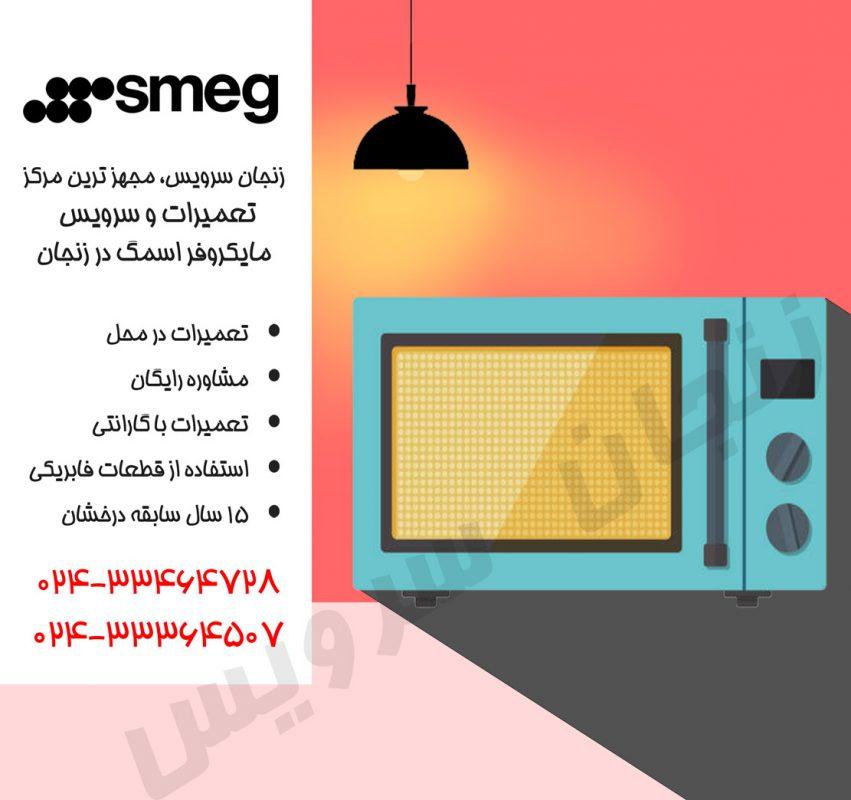 تعمیرات مایکروفر اسمگ در زنجان