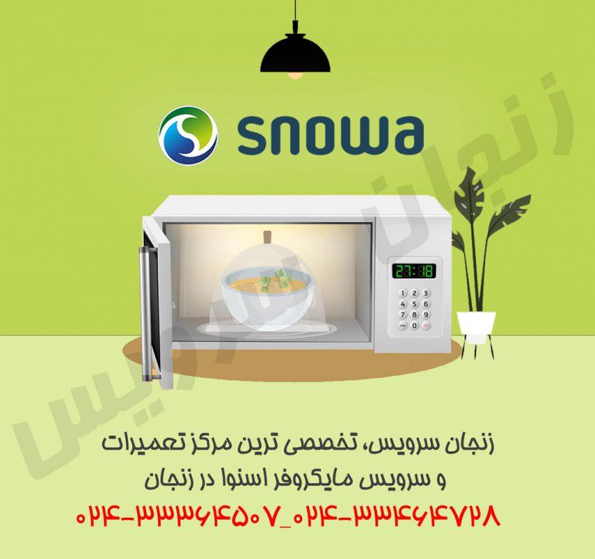 تعمیرات مایکروفر اسنوا در زنجان
