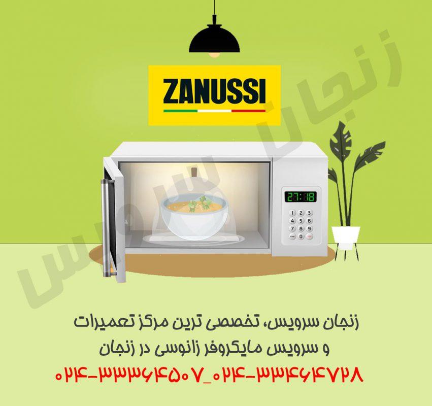 تعمیرات مایکروفر زانوسی در زنجان